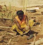 Woman farmer planting tree seedlings