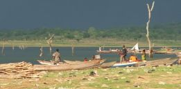 Trees and fishermen, Dambai, Volta Lake