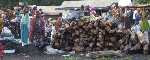 Fuelwood and charcoal for sale at the market