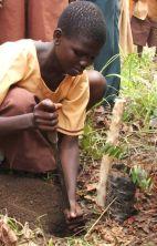 Girl planting tree