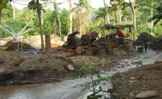 Forest damage caused by mining