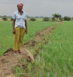 Empowered woman rice farmer with access to land and irrigation water