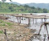 Fishing canoes; no motorised boats are allowed on Lake Bosumtwe because they will disturb the fish