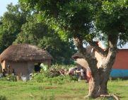village near Yendi, NR